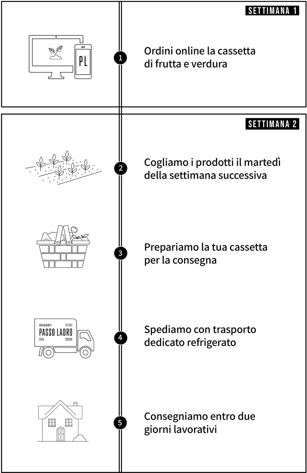 Infografica del processo di consegna delle cassette di frutta e verdura Bio
